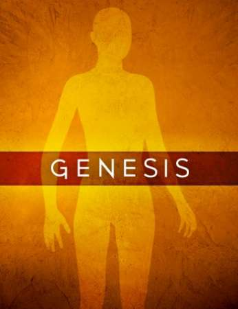 Genesis 1 Starter Essentials